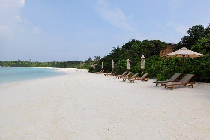 barefoot-maldives